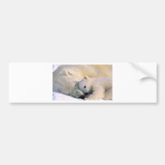 Polar Bear Hugs Bumper Sticker