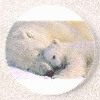 Polar Bear Hugs Coaster