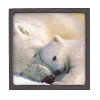 Polar Bear Hugs Premium Keepsake Box