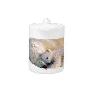 Polar Bear Hugs