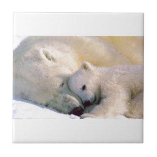 Polar Bear Hugs Tile
