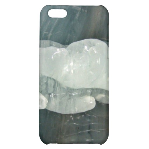Polar Bear ice sculpture iPhone 5C Covers