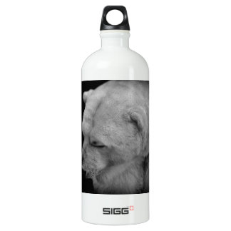 Polar Bear in Black and White Water Bottle