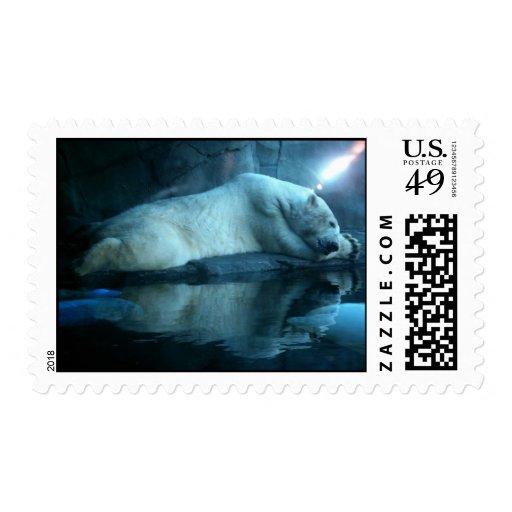 Polar Bear In Prayer 2 Postage Stamps