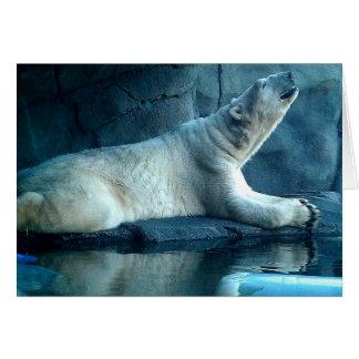Polar Bear In Prayer Blank Card