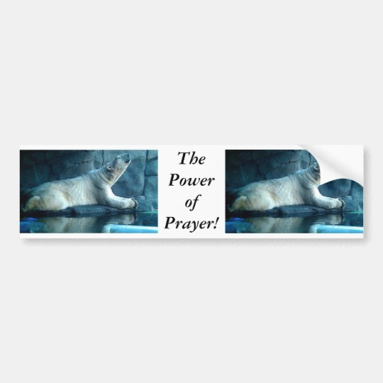 Polar Bear In Prayer Bumper Sticker
