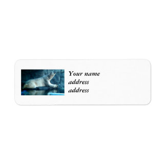 Polar Bear In Prayer Return Address Labels