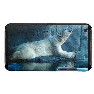 Polar Bear In Prayer Speck Case Case-Mate iPod Touch Case