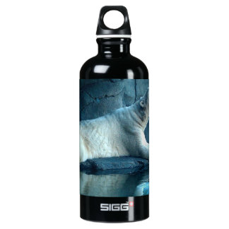Polar Bear In Prayer Water Bottle