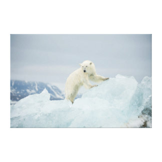 Polar bear in summer canvas print