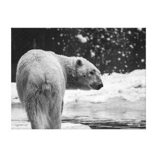 Polar Bear in the Snow Canvas Print