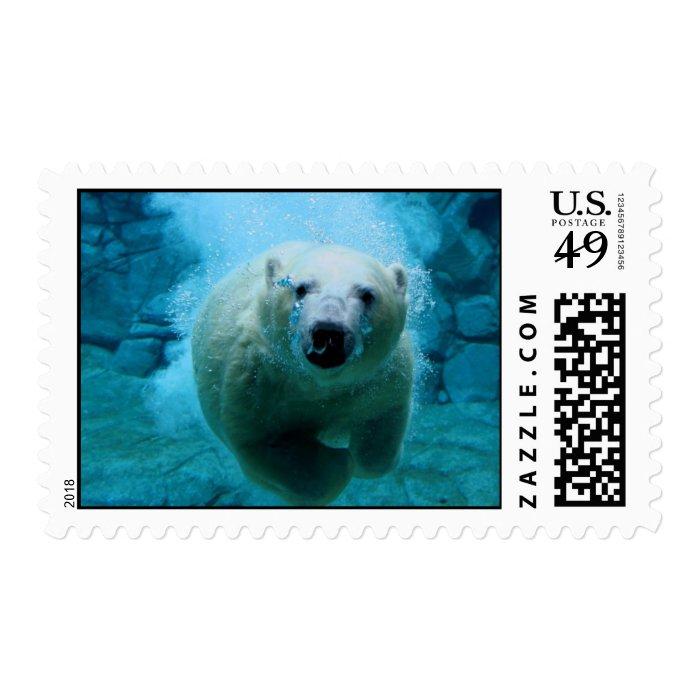 Polar Bear In Water Postage Stamp