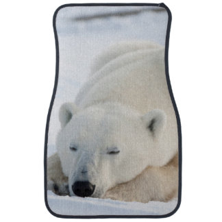 Polar Bear in winter Car Floor Mat