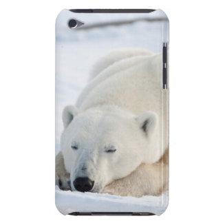 Polar Bear in winter Case-Mate iPod Touch Case