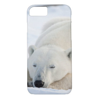 Polar Bear in winter iPhone 7 Case