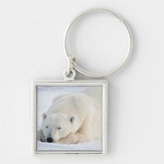 Polar Bear in winter Keychain