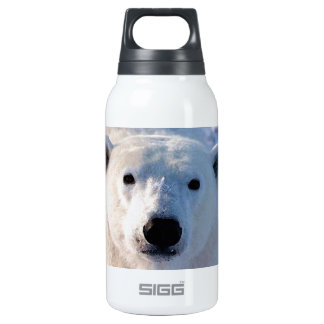 Polar Bear Insulated Water Bottle
