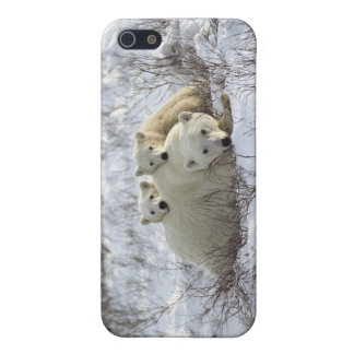 Polar Bear iPhone case #10 iPhone 5 Covers