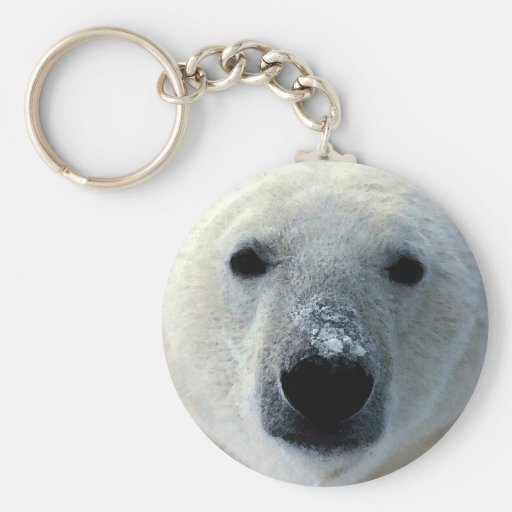 Polar Bear Key Chains