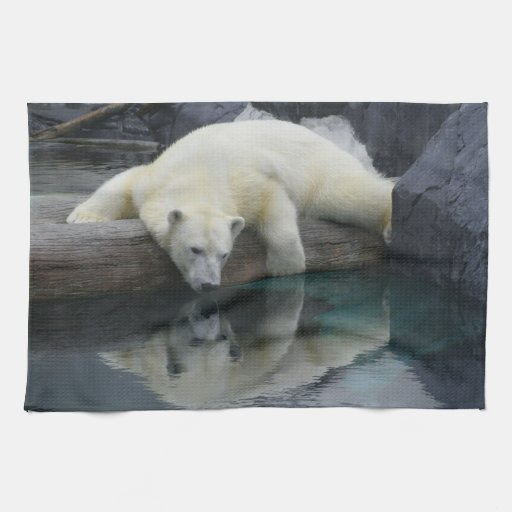 Polar bear kitchen towel home decor zazzle for Bear decorations for home