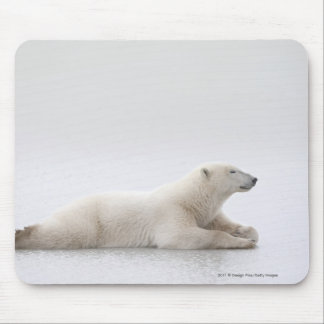 Polar Bear Laying On A Lake Of Ice Mouse Pad