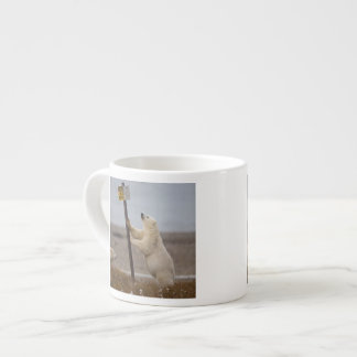 Polar bear leans on sign for buried pipe espresso cup
