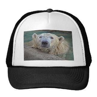 Polar Bear Lookin Cute Ball Cap Trucker Hats