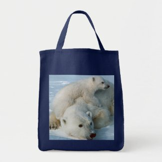 Polar Bear Lovers Gifts Bags