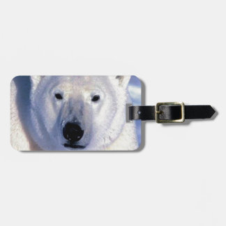 Polar Bear Tags For Bags