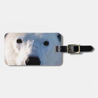 Polar Bear Luggage Tags