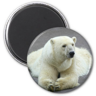 Polar Bear 2 Inch Round Magnet