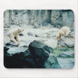 Polar bear mom you can do it cub mousepad