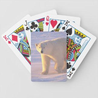 Polar Bear Morn 2 Bicycle Playing Cards