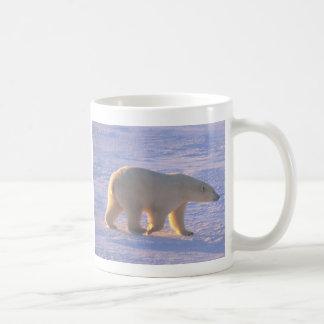 Polar Bear Morn Coffee Mug