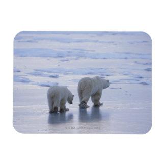 Polar Bear Mother and Cub Magnet