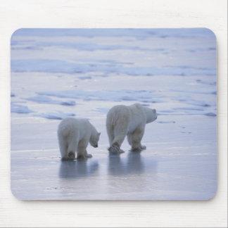 Polar Bear Mother and Cub Mouse Pads