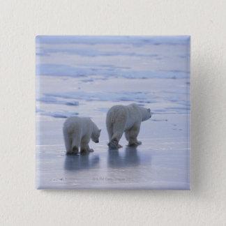 Polar Bear Mother and Cub Pinback Button