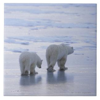 Polar Bear Mother and Cub Tile