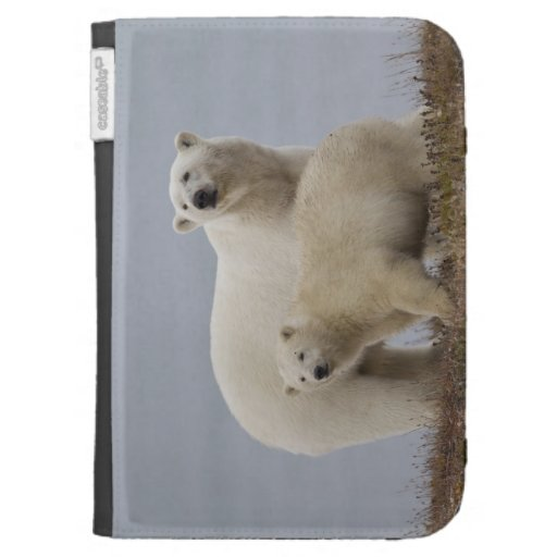 Polar bear mother and her cub rest in the tundra kindle folio cases