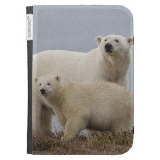 Polar bear mother and her cub rest in the tundra cases for the kindle