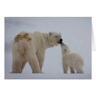 Polar Bear mother with cub Card