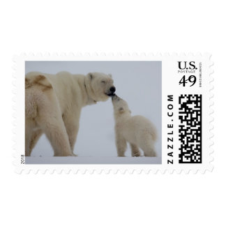 Polar Bear mother with cub Postage Stamp