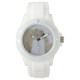 Polar Bear mother with cub Wrist Watch