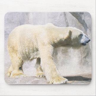 polar bear mousemats