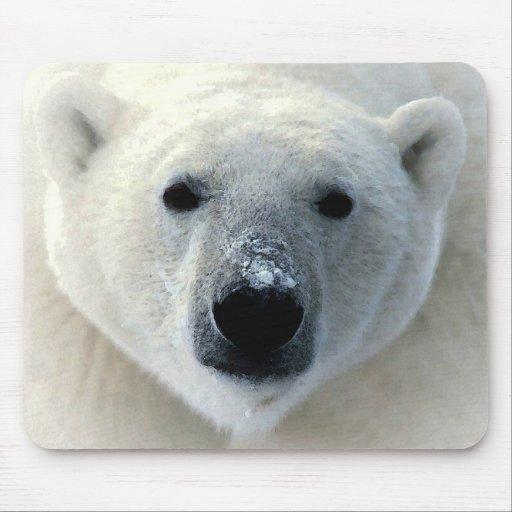 Polar Bear Mouse Pads