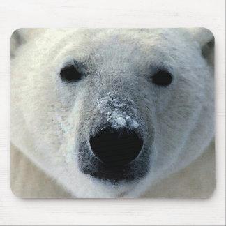 Polar Bear Mouse Pad