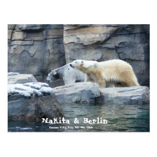 Polar Bear: Nakita and Berlin Postcard