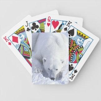 Polar Bear Nap Bicycle Playing Cards