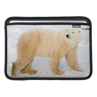 Polar Bear near Hudson Bay 2 Sleeves For MacBook Air