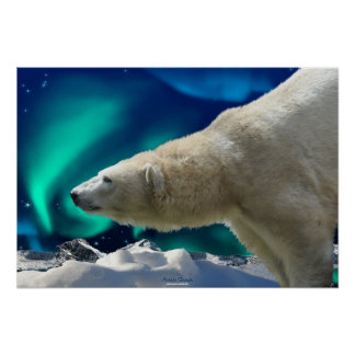 Polar Bear & Northern Lights Wildlife Art Poster